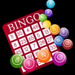 Bingo Money