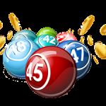 Bingo Money Real