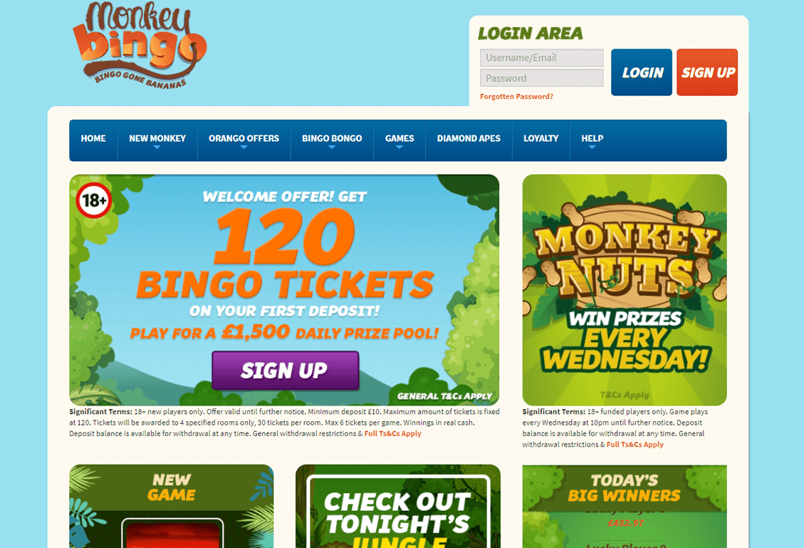 Monkey Bingo Screenshot