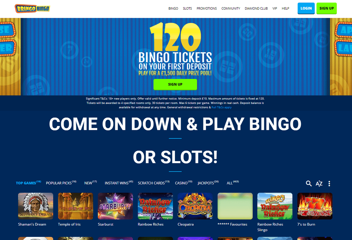 Bringo Bingo Screenshot